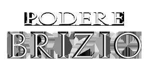 podere_brizio_logo_parallax